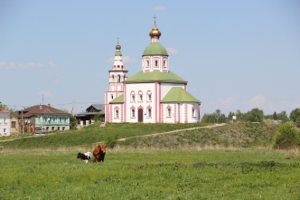 Suzdal - Church & Cows