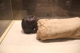 Cairo Museum (8)