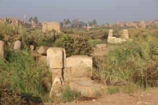 Amarna (1)