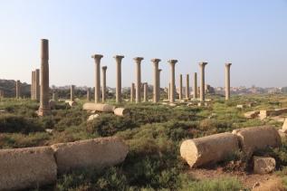 Amarna (3)