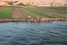 Back on The Nile (4)